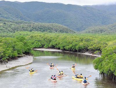 IUCN調査団が西表を視察 世界遺産登録に向け カヌーで川下りも